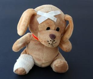 teddy-242851_1920