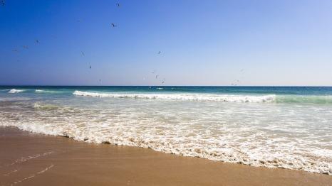 beach-1661720_1920