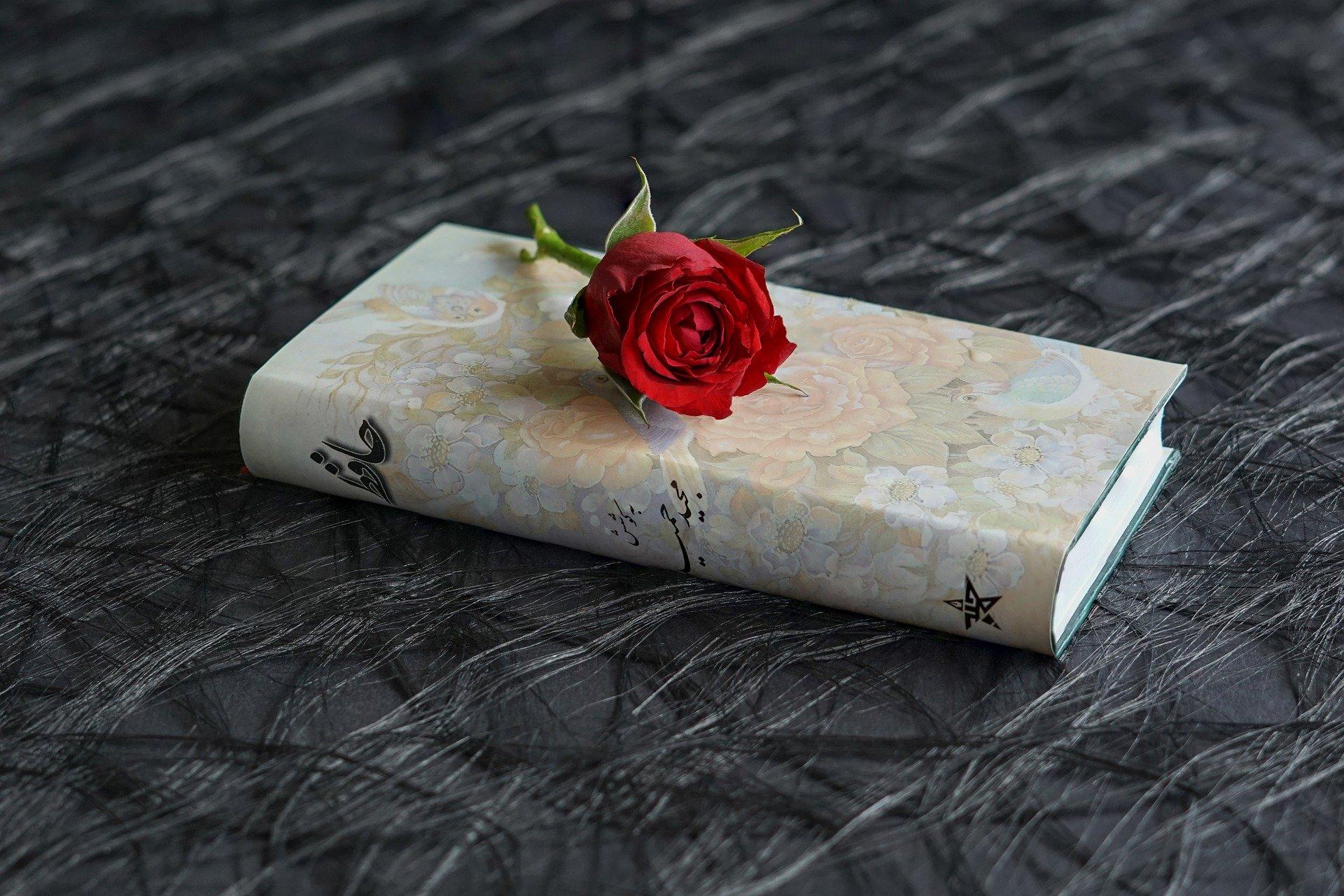 book-3199610_1920